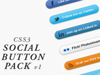 Social Button Pack on Code Canyon